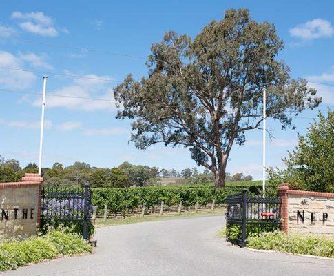 Adelaide Hills Grüner Veltliner