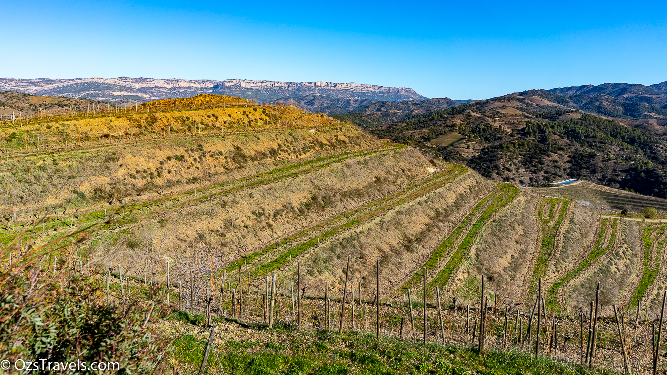 Priorat, Clos Mogador, Wine, Wineries, Priorat Spain, Spain